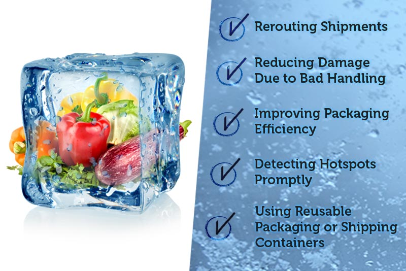 Cold-Chain-Monitoring-Can-Reduce-Product-Spoilage.jpg